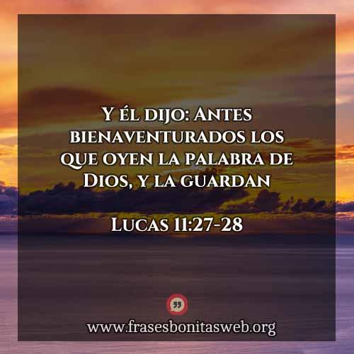 lucas-11-27-28-dev