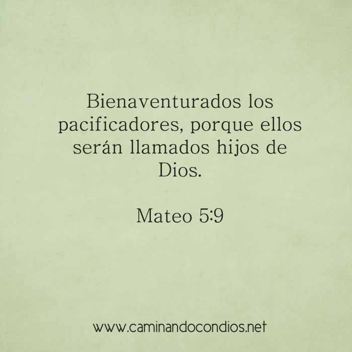 mateo5-9-dev