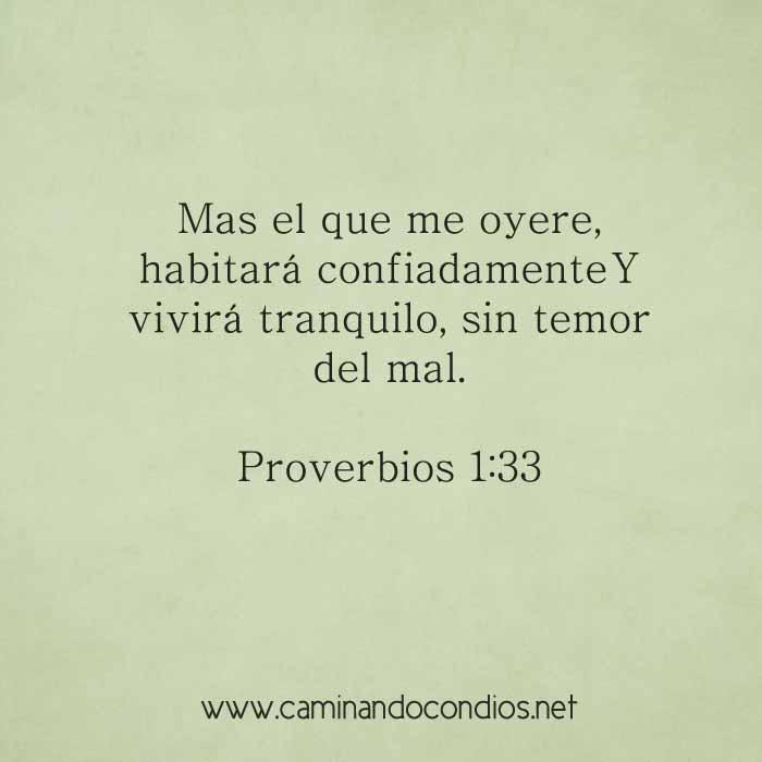 proverbios1-33-dev