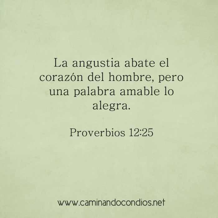 proverbios12-25-dev
