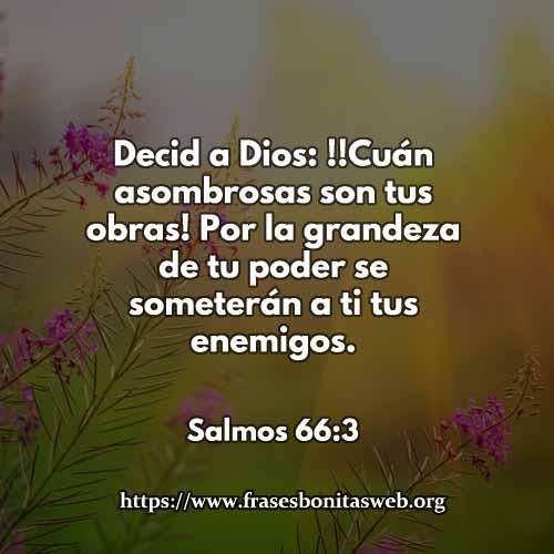 salmos66-3-CCDIOS