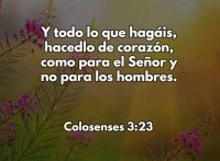 colosenses323-dev