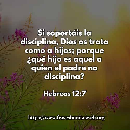 hebreos127-dev