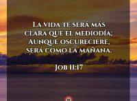 job-11-17-dev