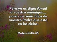 mateo5445-dev
