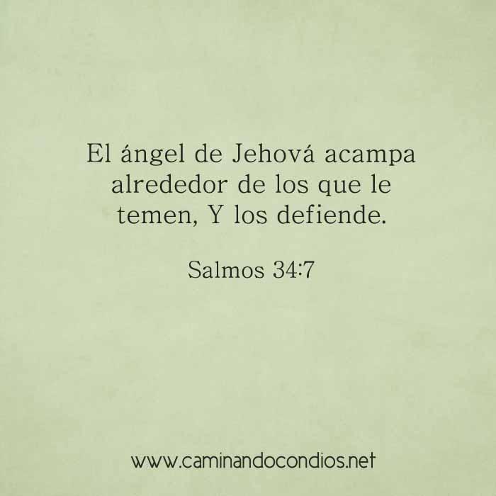 salmos-34-6-7-dev