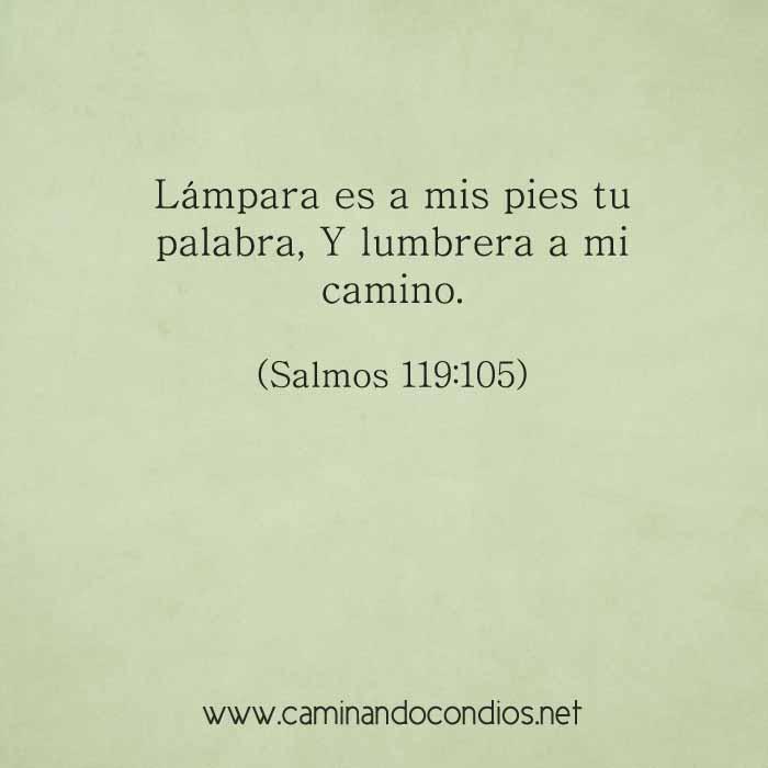salmos119-105-dev