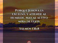 salmos136-8-dev