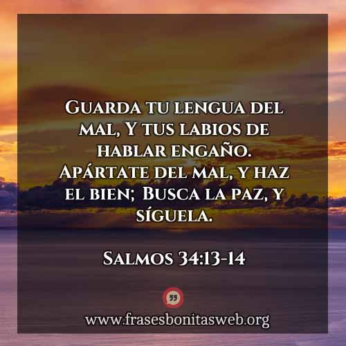 salmos341314-dev
