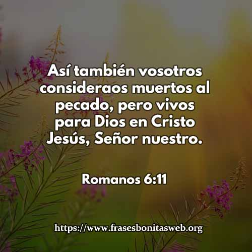 Romanos6-11-dev
