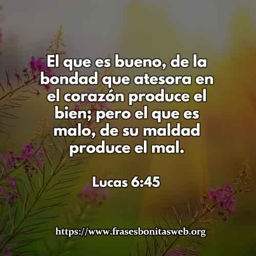 lucas6-45-dev