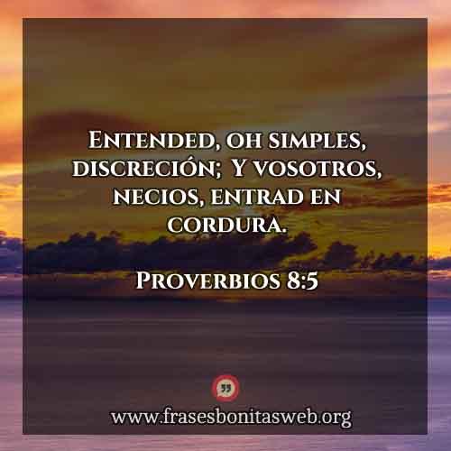 proverbios8-5-dev