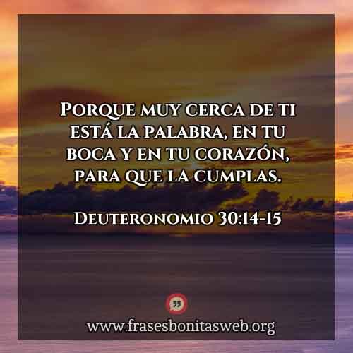 Deuteronomio30-14-15