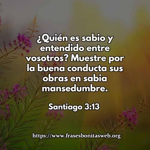 Santiago-3-13-dev-dev