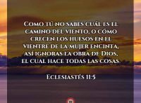 eclesiastes11-5-dev