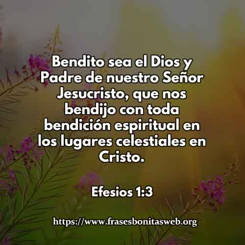 efesios-1-3-dev