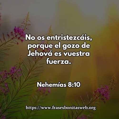nehemias8-10-dev