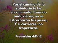 proverbios4-11-12-CCDUIS