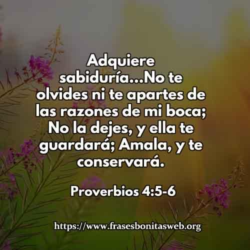 proverbios4-5-6-dev