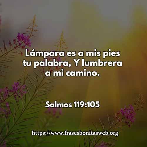 salmos-119-105-dev