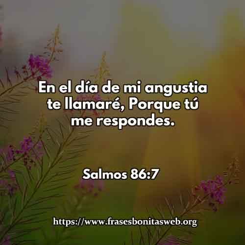 salmos-86-7-dev