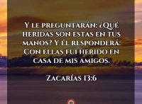 zacarias-13-6-dev