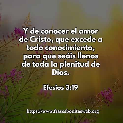 efesios3-19-dev