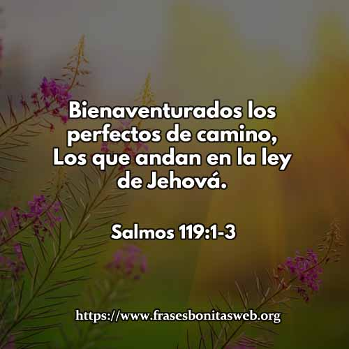 salmos119-1-3-dev