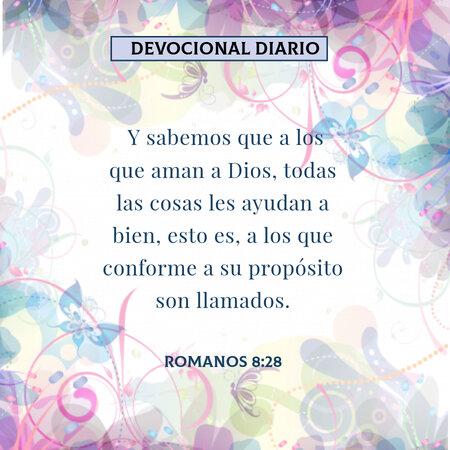 rsz_1devocional-diario-romanos-8-28