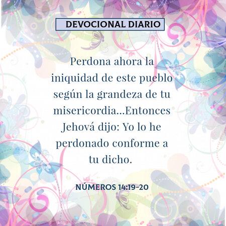 rsz_devocional-diario-numeros-14-19-20