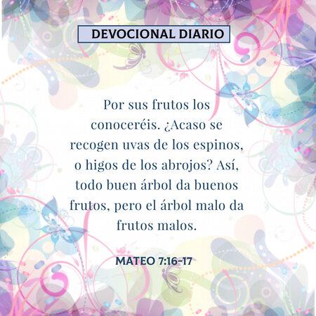rsz_devocional-diario-mateo7-16-17-dev