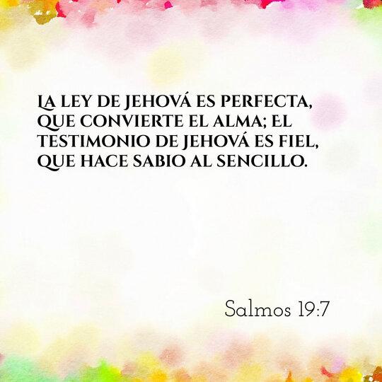 rsz_comentario-salmos-19-7