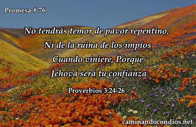 proverbios 3:24-26