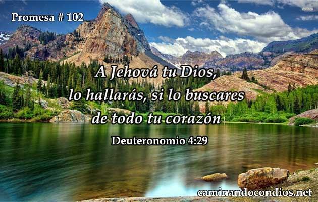 Deuteronomio 4:29