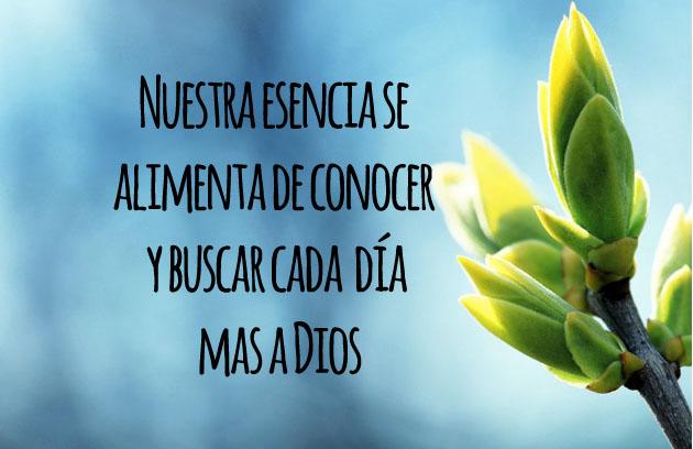 Esencia Dios