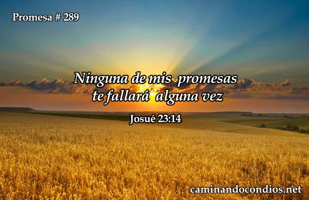 Josue 23:14