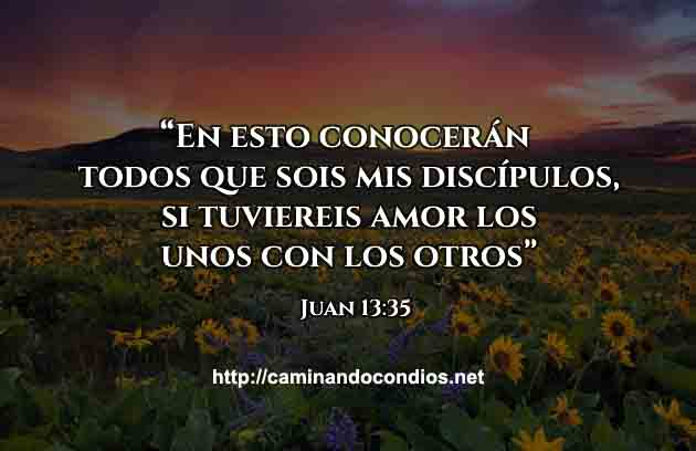 Frases-Dios-Juan-13-35