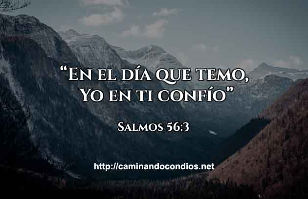 06Febrero-Salmo-91