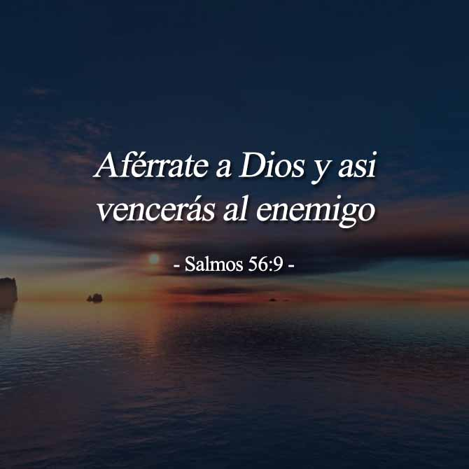 aferrate-a-DIOS