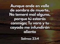 salmos-23-4