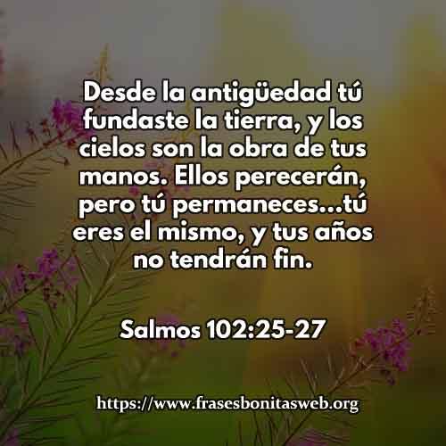 salmos1022527