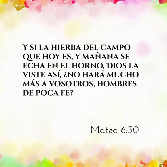 rsz_comentario-biblico-mateo-6-30