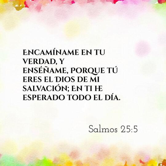 rsz_comentario-biblico-salmos-25-5-dev