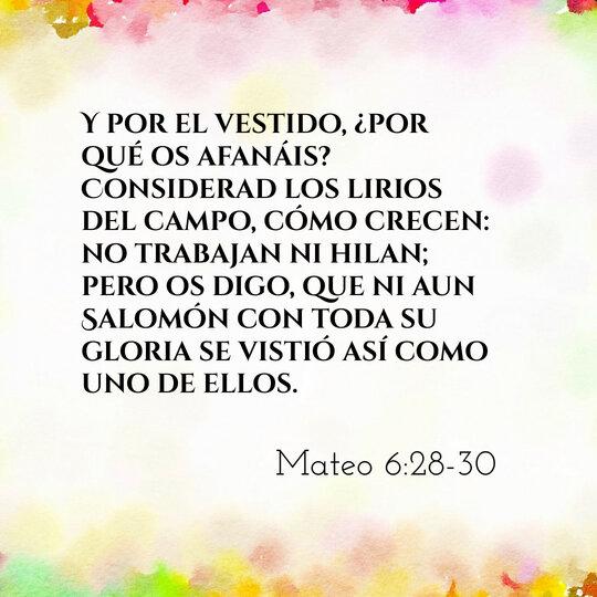 rsz_comentario-biblico-mateo-6-28-30-de_