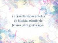 rsz_devocional-diario-isaias-61-3-dev
