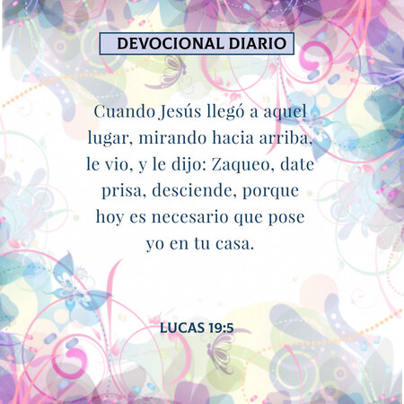 rsz_devocional-diario-lucas19-5-dev